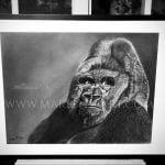 tableau gorille